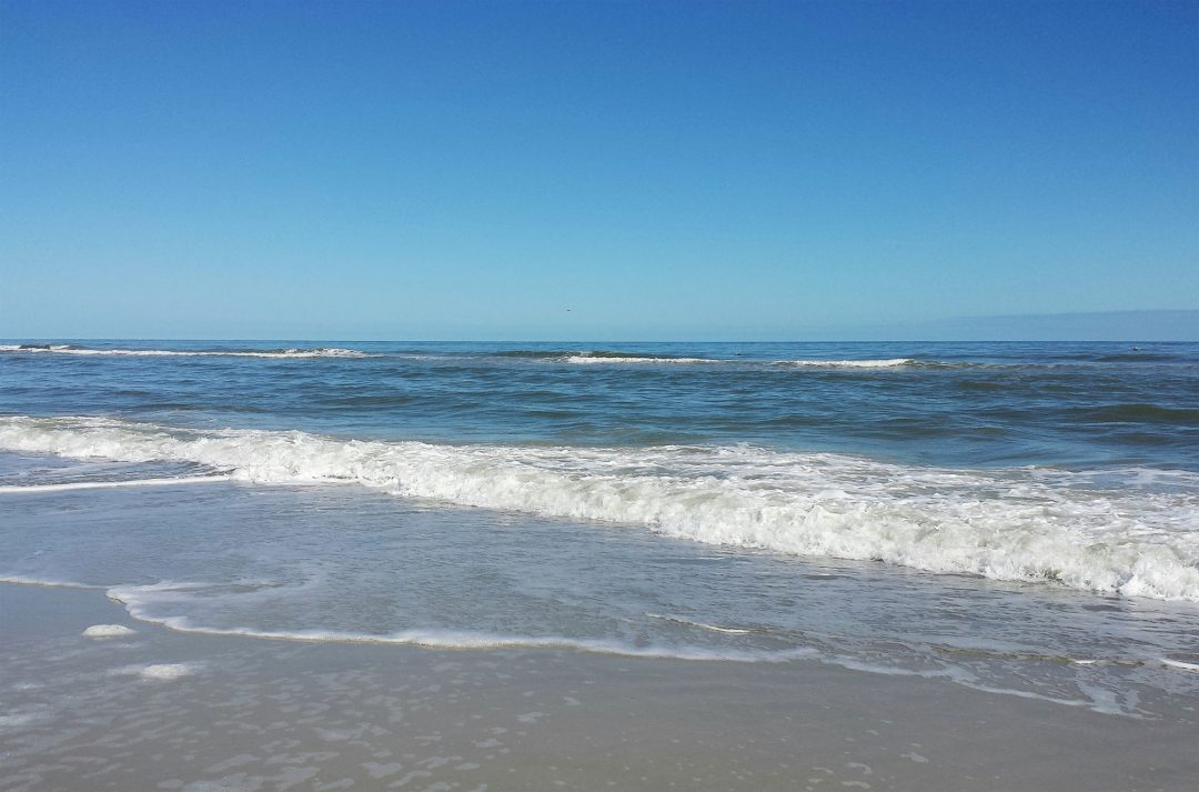 Seashore Creative About Us